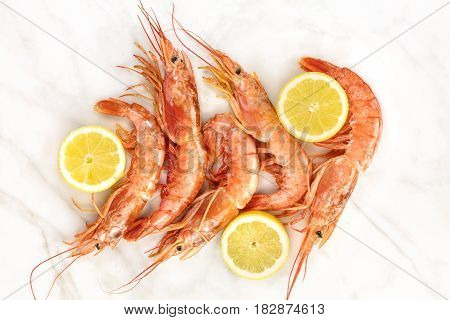 Raw shrimps with slices of lemon, shot from above on a white marble table with a place for text