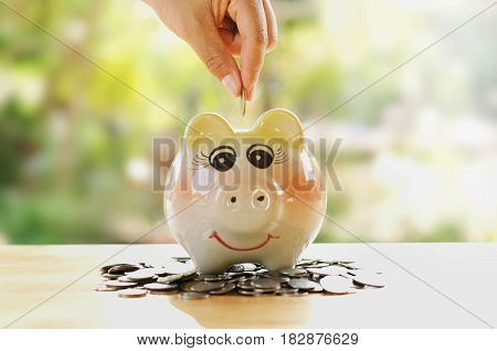 hand save piggy bank and stack money growing and graph