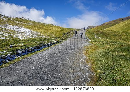 view of stone walk way to alp mountain with people hiking green grass and clear blue sky