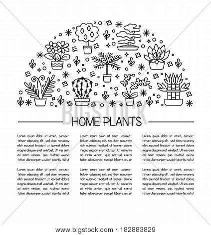 House Plants Concept For Garden Center, Flower & Florist Shop. Vector Rounded Illustration From Symb
