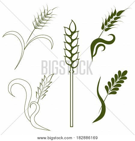 Stock vector rye, wheat logo elements, graphic design elements for product packing design stock vector illustration
