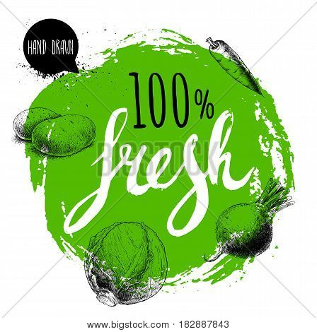 Farmer 100% fresh veggies design template. Green rough circle with hand painted letters. Engraving sketch style vegetables. Potatoes carrot beet root and cabbage. Hand drawn design.
