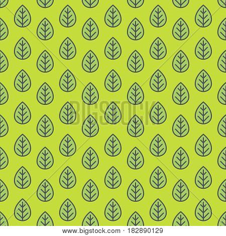 Leaves pattern green color for decoration natural product store, organic shop, nature firm, ecology company, garden, green unity, farming, forest. Vector Illustration
