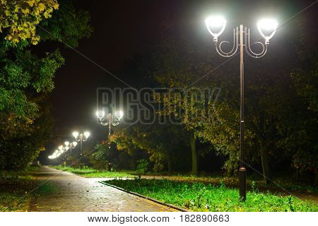 Park Night Lanterns Lamps: A View Of A Alley Walkway, Pathway In A Park With Trees And Dark Sky As A