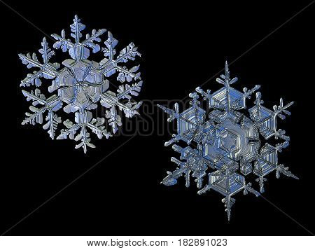 Two snowflakes, isolated on black background. This set composed from photos of real snow crystals: large stellar dendrites with elegant shape, ornate arms and complex structure.