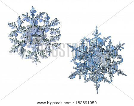 Two snowflakes, isolated on white background. This set composed from photos of real snow crystals: large stellar dendrites with elegant shape, ornate arms and complex structure.
