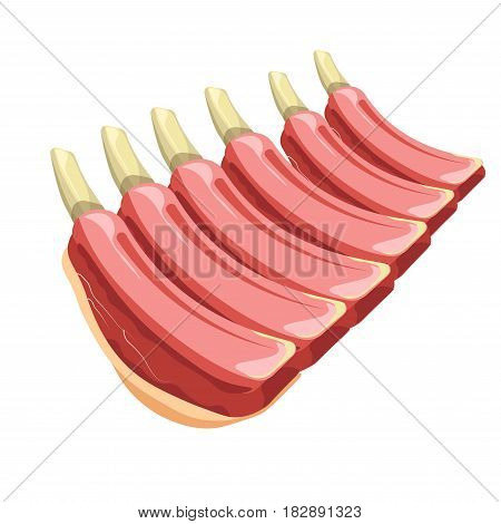 Vector illustration of the stack of uncooked ribs isolated on white.