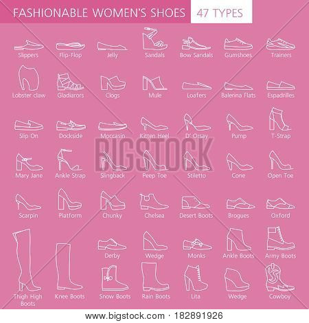 Collection of summer, autumn and winter shoes. Set of fashionable women's shoes. Different types footwear
