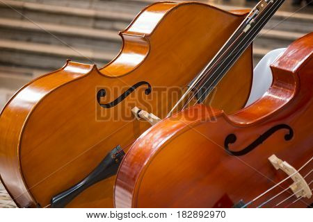Close up of two cello. violoncello, violin