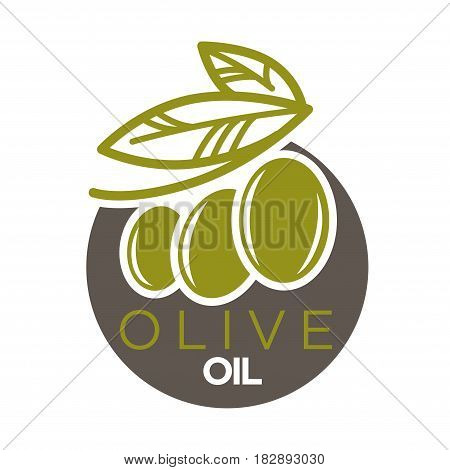 Olive oil logo design vector illustration of company label with green olives berries with leaves. Healthy condiment template with colorful sticker of extra virgin vegetables flat logotype on white.