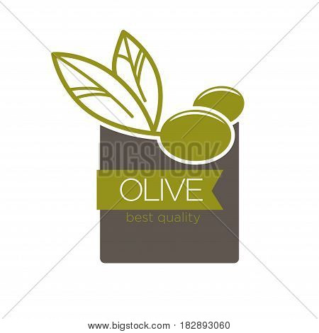 Vector illustration of the olives with best quality lettering.