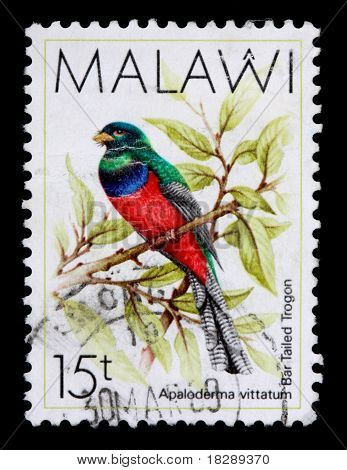 Malawi - Circa 1987: An 15-tambala Stamp Printed In Malawi Shows The Bar Tailed Trogon, Apaloderma V