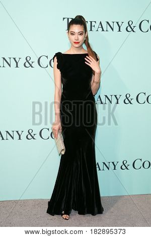 BROOKLYN, NY-APR 21: Hikari Mori attends the Tiffany & Co. 2017 Blue Book Collection Gala at St. Ann's Warehouse on April 21, 2017 in Brooklyn, New York.