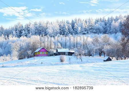 Winter. Beautiful winter landscape with snow covered trees. Village in winter. Winter countryside. Colored house in winter forest