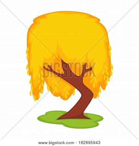 Yellow willow tall tree on green grass land spot isolated on white. Vector illustration in flat design of high plant with brown stem and orange leaves. Bowed wood in autumn season template