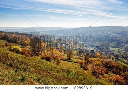 Colorfull Trees On A Hill. Autumnal Landscape. Forest In Autumn