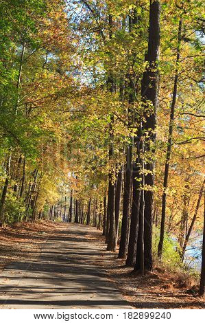 Walking path in Lake johnson park of Raleigh NC