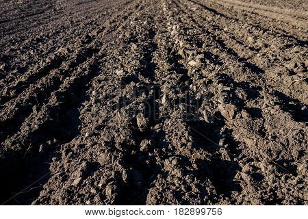Agricultural Background Of Newly Plowed Field Furrows Ready For New Crops. Close Focus.