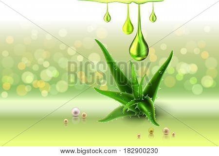 Green light shiny sparkle background and swirl bokeh light background. Aloe vera green lights, oil drops and empty place for objects. Vector illustration stock vector.