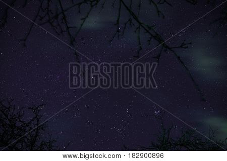 Clouds Passing In The Moon Light By Over A Forest And On A Night Sky Full Of Stars