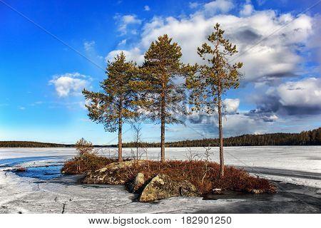Spring landscape. Spilling the Pista River. Lake Khirvas-Yarvi. Russia. Karelia