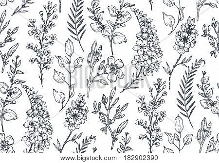 Seamless pattern with hand drawn spring flowers and plants in sketch style. Monochrome vector endless nature background.
