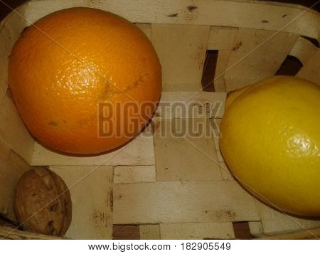 Orange - edible fruit of an evergreen tree orange berry. There is a different size, shape and color of the skin from light yellow to reddish-orange fruit  Lemon a fruit tree evergreen plant yellow