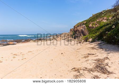 Beach Ocean Rocky Vegetation Coastline