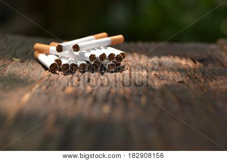 Tobacco cigarettes on wooden background with light shines on the tobacco cigarettes.