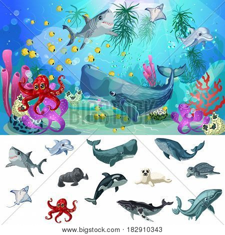 Cartoon sea and ocean fauna concept with underwater animals on colorful marine landscape vector illustration