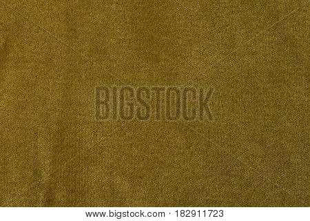 Golden angora goat velours fabric resembling velvet mixed with natural silk threads. mohair textile. cashmere velvet suede and chamois effect. for upholstery