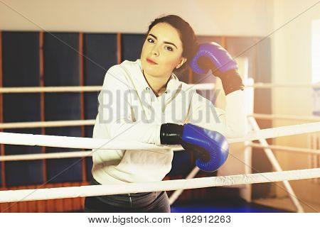 Portrait Of Beautiful Boxing Girl In Blue Gloves Posing In The Ring. Training At The Gym. Sporty Fem
