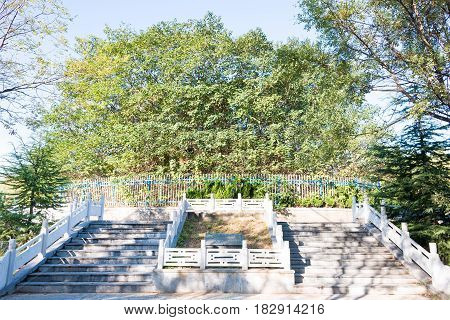 Henan, China - Oct 27 2015: Tomb Of Dong Guifei(181-200). A Famous Historic Site In Xuchang, Henan,