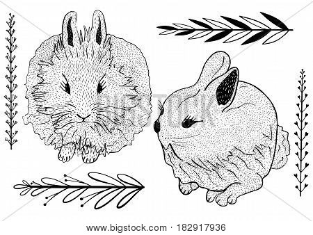 Hand Drawn Cute Bunnies Set. Hatching Doodle Style.