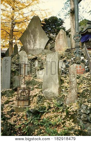 Ancient prayer stones in a hill in the Narita-san Shinshō-ji Shingon Buddhist temple, Narita, Japan, during November.