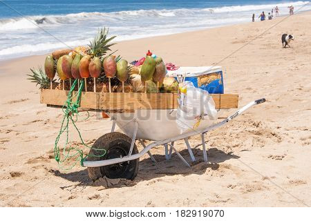 A wheelbarrow customized to sell fruits and fruit drinks at the beach