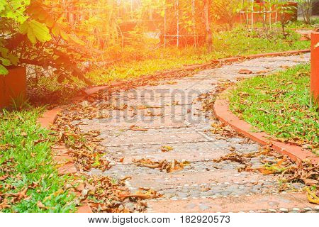 Stone block walkway path in the park dry leaf drop in autumn :Select focus with shallow depth of field.