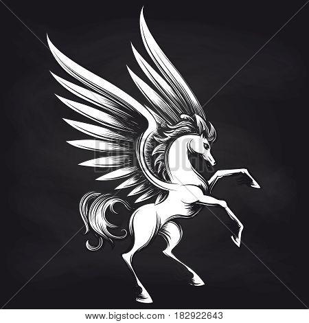 Black and white Pegasus on chalkboard design. Pegasus sketch background, vector illustration