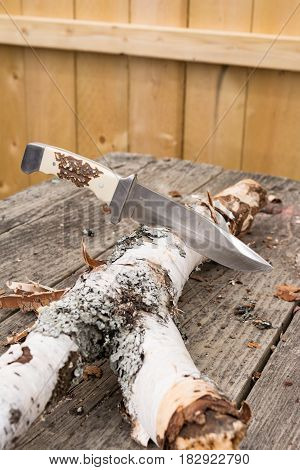 Large hunting knife stuck in wood with wood shavings .