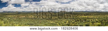 Panorama of the namibian grassland in the rain season Namibia Africa