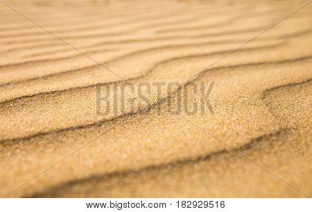 Sandy waves, beach on Ceylon coast