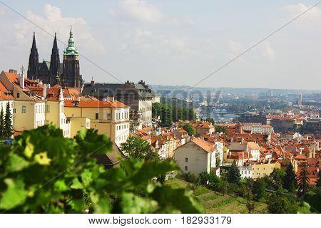 Prague Castle taken from the Petrin Hill