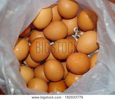 Dozens of farm fresh chicken eggs in a plastic bag.