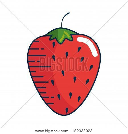 stawberry fruit icon over white background. colorful design. vector illustration