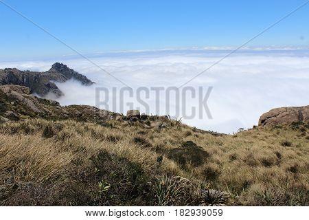 Tirada na trilha ao Morro do Couto, Itatiaia, RJ.