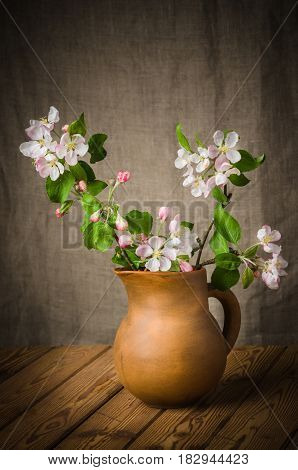 Branch of a blossoming apple-tree in a clay pitcher close-up