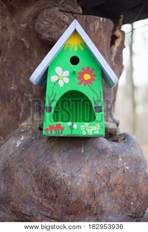 One little bird house on a tree trunk