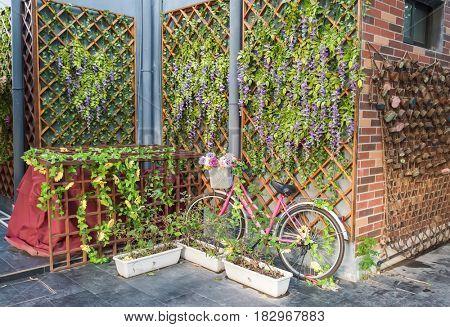 bicycle in flower garden