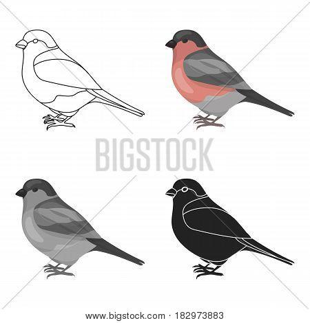 Bullfinch icon in cartoon style isolated on white background. Bird symbol vector illustration.