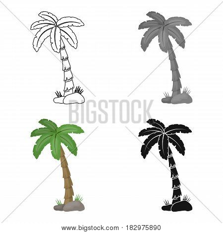 Palm tree icon in cartoon design isolated on white background. Brazil country symbol stock vector illustration.